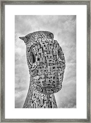 Looking Down. Framed Print by Angela Aird