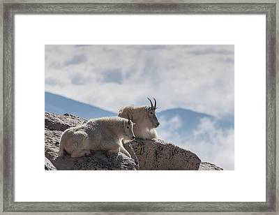 Looking Down On The World Framed Print