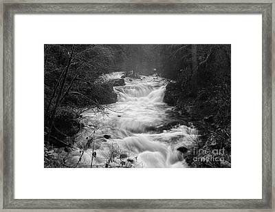 looking down the Creek Framed Print by Masako Metz