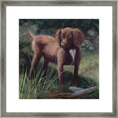Looking For Adventure Framed Print by Mary Benke