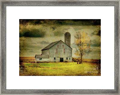 Looking For Dorothy Framed Print by Lois Bryan