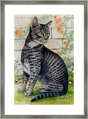 Looking For Mum Framed Print by Val Stokes