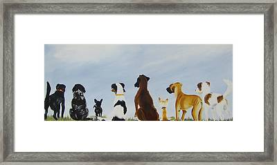 Looking For Our Forever Home Framed Print