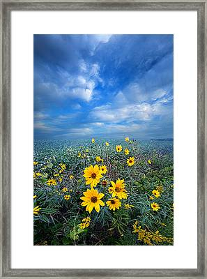 Looking For Space Framed Print by Phil Koch
