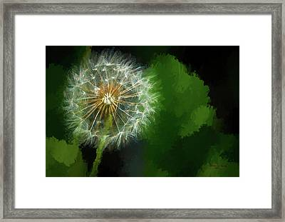 Looking For Wind Framed Print