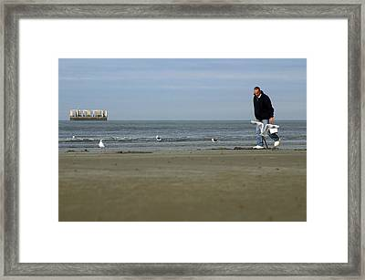 Looking For Worms Framed Print by Jez C Self