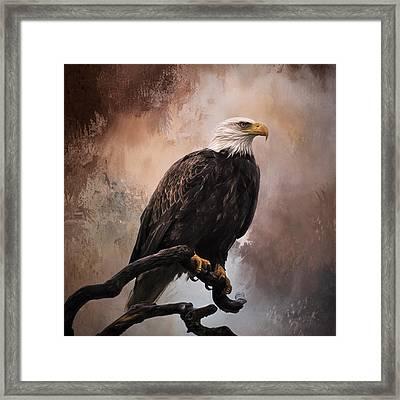 Looking Forward - Eagle Art Framed Print
