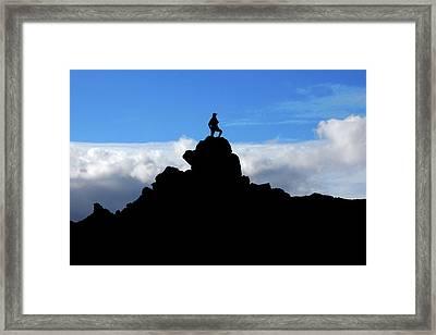 The Summit Hunter Framed Print