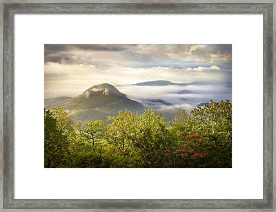 Looking Glass Sunrise - Blue Ridge Parkway Landscape Framed Print by Dave Allen