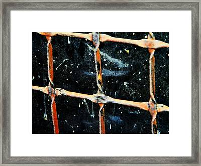 Looking Into The Night Framed Print by Lenore Senior