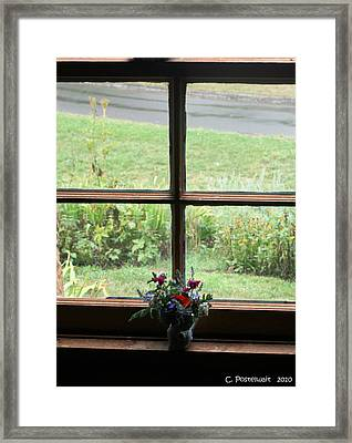 Looking Out Framed Print by Carolyn Postelwait