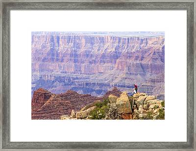 Looking Out From Lipan Point 2 Framed Print