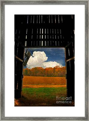 Looking Out Framed Print by Lois Bryan