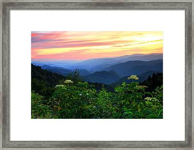 Looking Out Over Woolyback On The Blue Ridge Parkway  Framed Print