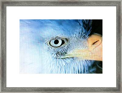 I See You Framed Print by Beverly Johnson