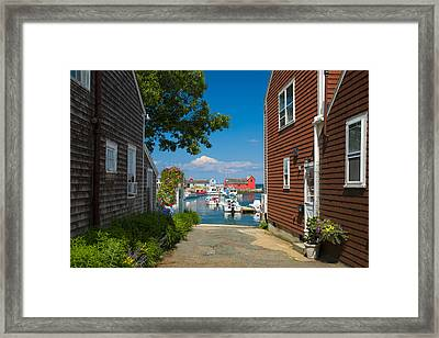 Looking Rockport Framed Print by Emmanuel Panagiotakis