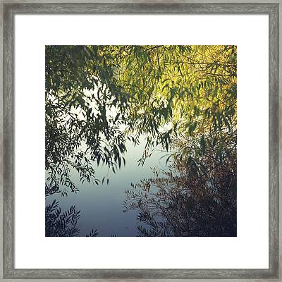 Looking Through Reflections Framed Print