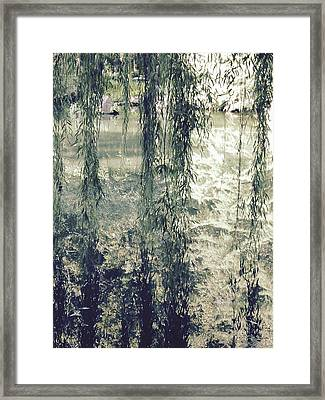 Looking Through The Willow Branches Framed Print by Linda Geiger