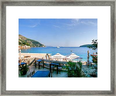 Looking To Dine Out Framed Print