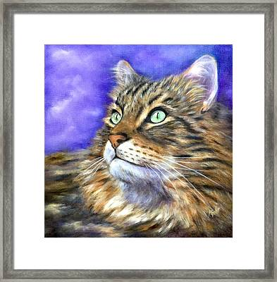 Looking To The Rainbow Bridge Framed Print