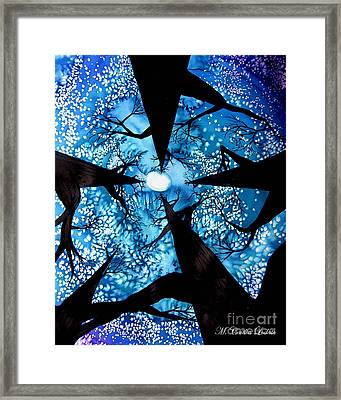 Looking Up At Midnight Trees Framed Print