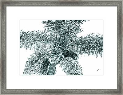 Framed Print featuring the photograph Looking Up At Palm Tree Green by Ben and Raisa Gertsberg