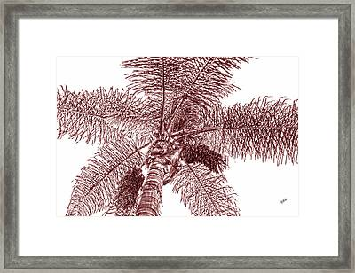 Framed Print featuring the photograph Looking Up At Palm Tree Red by Ben and Raisa Gertsberg