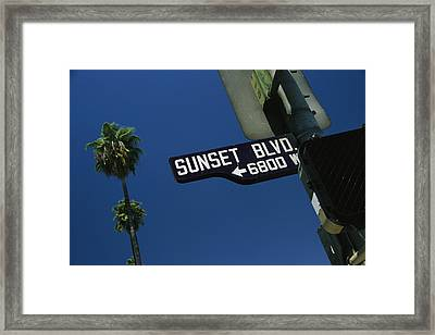 Looking Up At Sunset Boulevard Sign Framed Print by Todd Gipstein