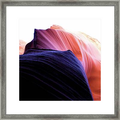 Framed Print featuring the photograph Looking Up - Dark To Light by Stephen Holst