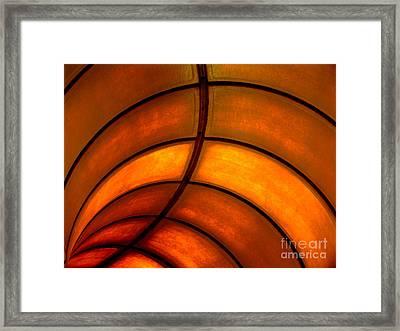 Looking Up Framed Print by Elizabeth McPhee