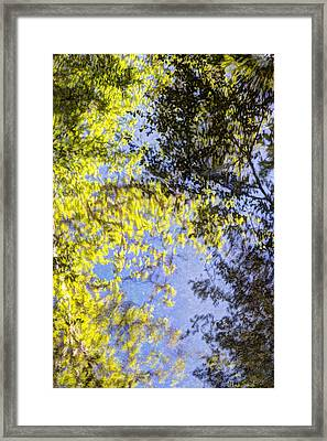 Framed Print featuring the photograph Looking Up Or Down by Heidi Smith