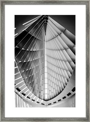 Framed Print featuring the photograph Looking Up by Steven Santamour