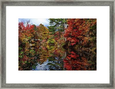 Framed Print featuring the photograph Looking Up The Chocorua River by Jeff Folger