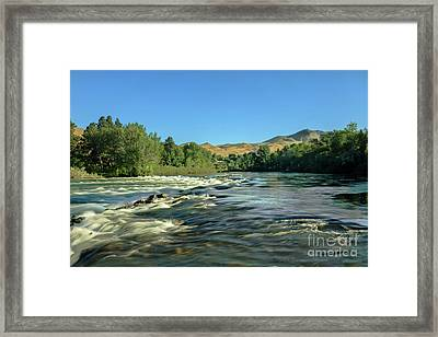 Looking Up The Payette Framed Print