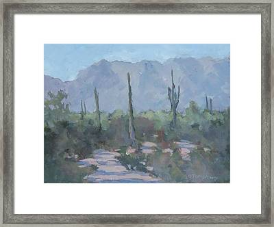 Looking West From Ahwatukee Framed Print