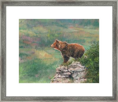 Lookout Framed Print by David Stribbling
