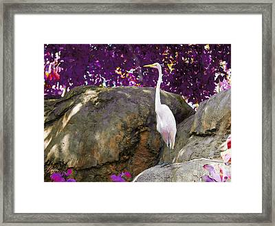 Lookout Mountain Framed Print by Judy Kay