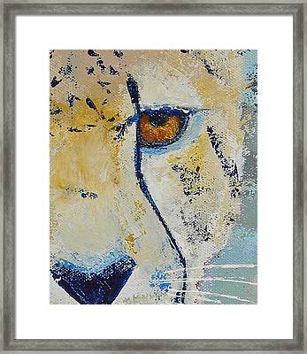 Looks Can Be Deceiving Close-up Framed Print