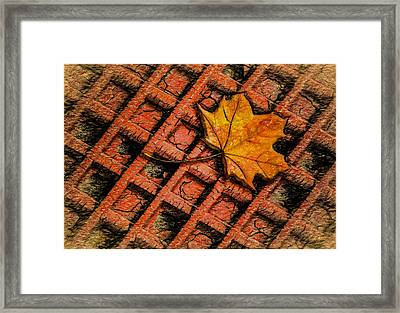 Looks Like Another Leaf Framed Print by Paul Wear