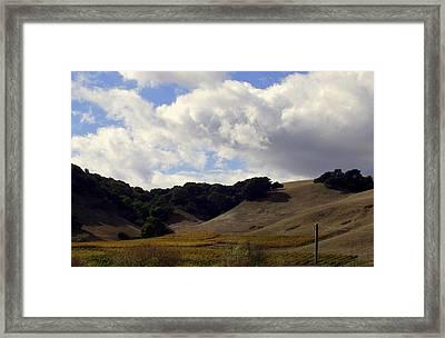 Looming Field Of Sonoma Framed Print by Deborah  Crew-Johnson