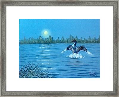 Loon Dance Framed Print