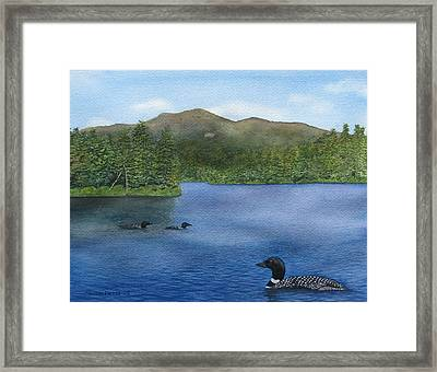 Loon Lake Framed Print by Sharon Farber