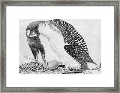 Loon Mother Framed Print