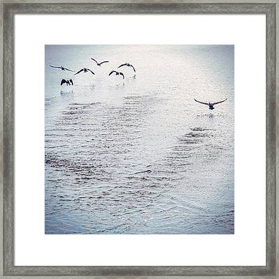 Framed Print featuring the photograph Looner Liftoff by Kendall McKernon