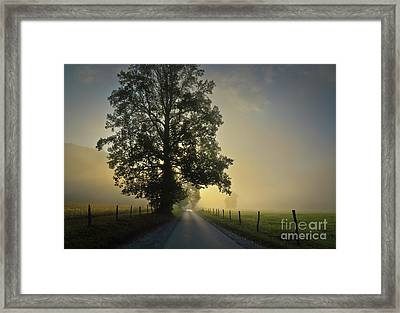 Loop Rd Sunrise Framed Print