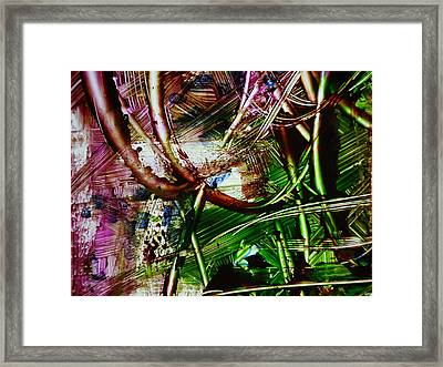 Looped Framed Print by Karen Lillard