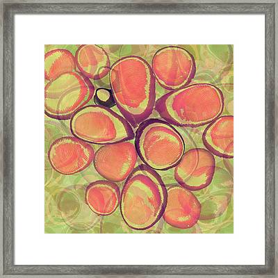 Loopy Dots #13 Framed Print