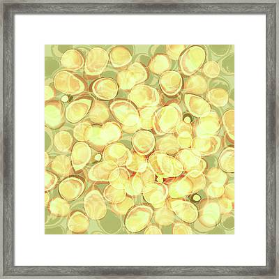 Loopy Dots #3 Framed Print
