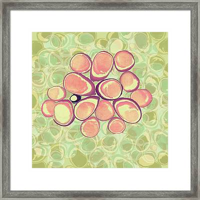 Loopy Dots #6 Framed Print