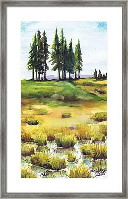 Lopaus Point Maine Framed Print
